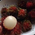 Dagens craving – Rambutan!